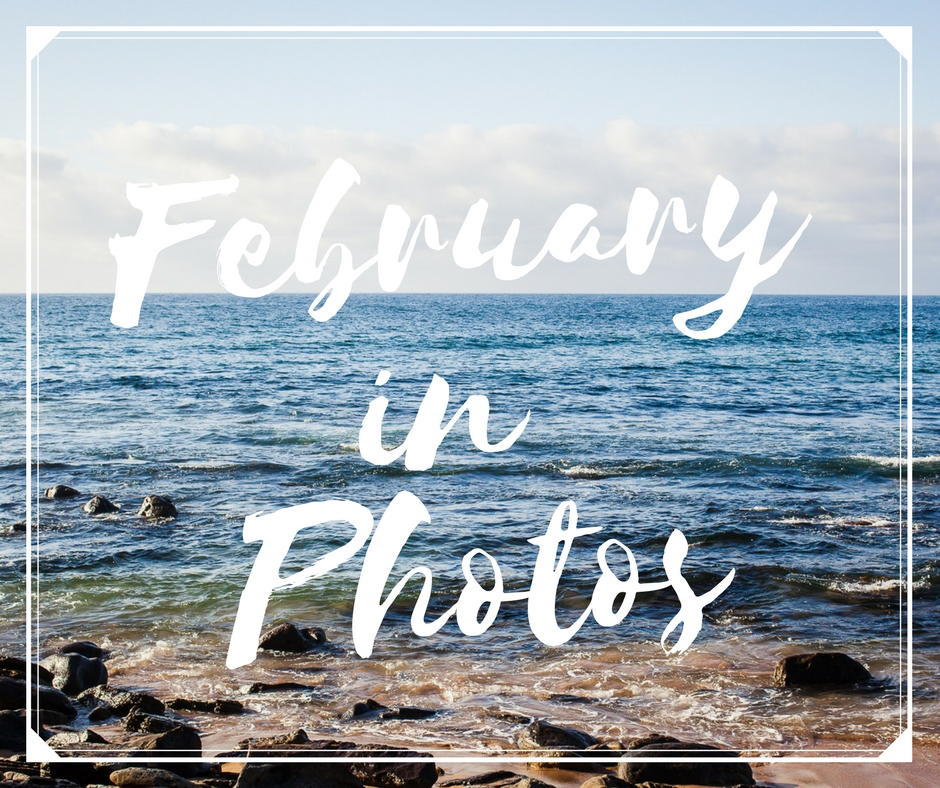 januaryinphotos